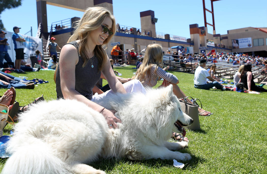 Kaitlin Kellogg pets her dog Jessi during the Las Vegas 51s against Albuquerque Isotopes at Cashman Field in Las Vegas, Sunday, April 30, 2017. Elizabeth Brumley Las Vegas Review-Journal @EliPagePhoto