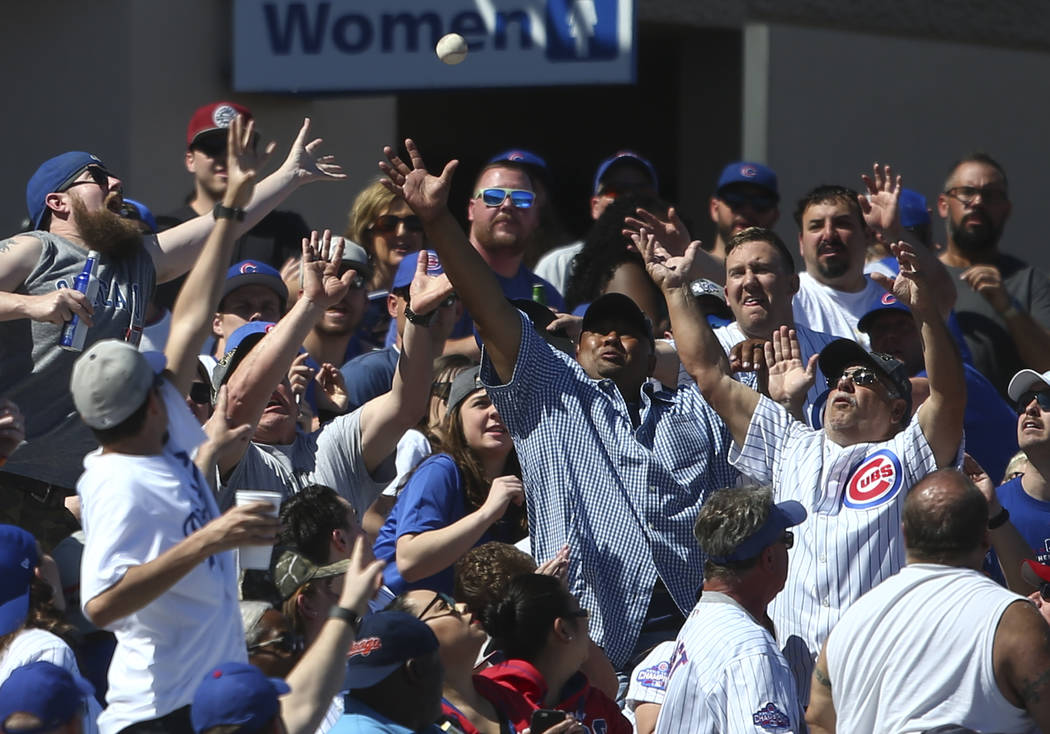Fans try to get a foul ball as the Chicago Cubs play the Cincinnati Reds during a Big League Weekend baseball game at Cashman Field in Las Vegas on Saturday, March 25, 2017. (Chase Stevens/Las Veg ...