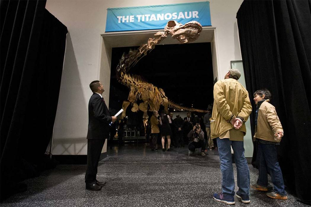 This Jan. 14, 2016, file photo shows visitors to the American Museum of Natural History examining a replica of a 122-foot-long dinosaur on display at the American Museum of Natural History in New  ...