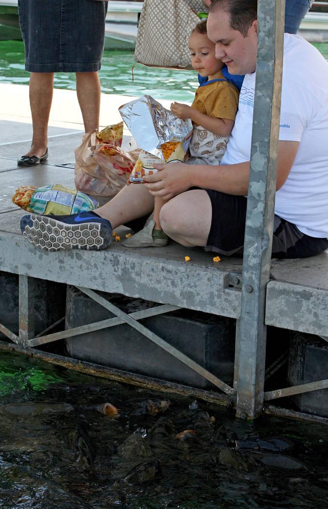 Nathaniel Rios, 2, left and his uncle Abraham Rios feed fish at the Lake Mead Marina, Tuesday, Aug. 15, 2017. Gabriella Benavidez Las Vegas Review-Journal @latina_ish