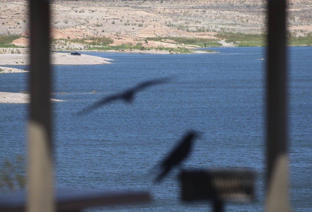 Lake Mead National Recreation Area on Tuesday, Aug. 15, 2017. Chase Stevens Las Vegas Review-Journal @csstevensphoto