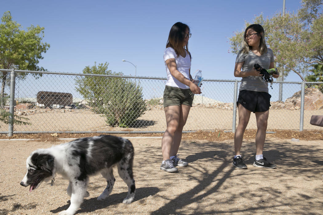 Sharmaine Velasco (left), 21, and Christine Yoo (right), 24, both of South Las Vegas, play with their dog Atticus in the small dog run in Silverado Ranch Park in Las Vegas, Tuesday,Aug. 15, 2017.  ...