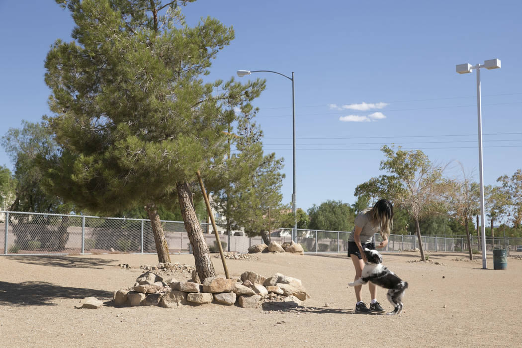 Christine Yoo plays with her dog Atticus in the small dog run in Silverado Ranch Park in Las Vegas, Tuesday,Aug. 15, 2017. Gabriella Angotti-Jones Las Vegas Review-Journal @gabriellaangojo