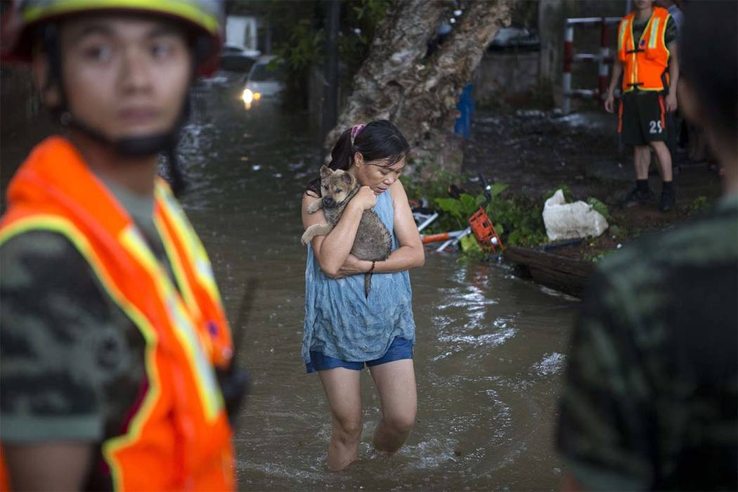 A woman holds on to her pet as they evacuate from floodwaters caused by Typhoon Hato in southern China's Guangdong province Wednesday Aug. 23, 2017. Thousands of people were evacuated from parts o ...