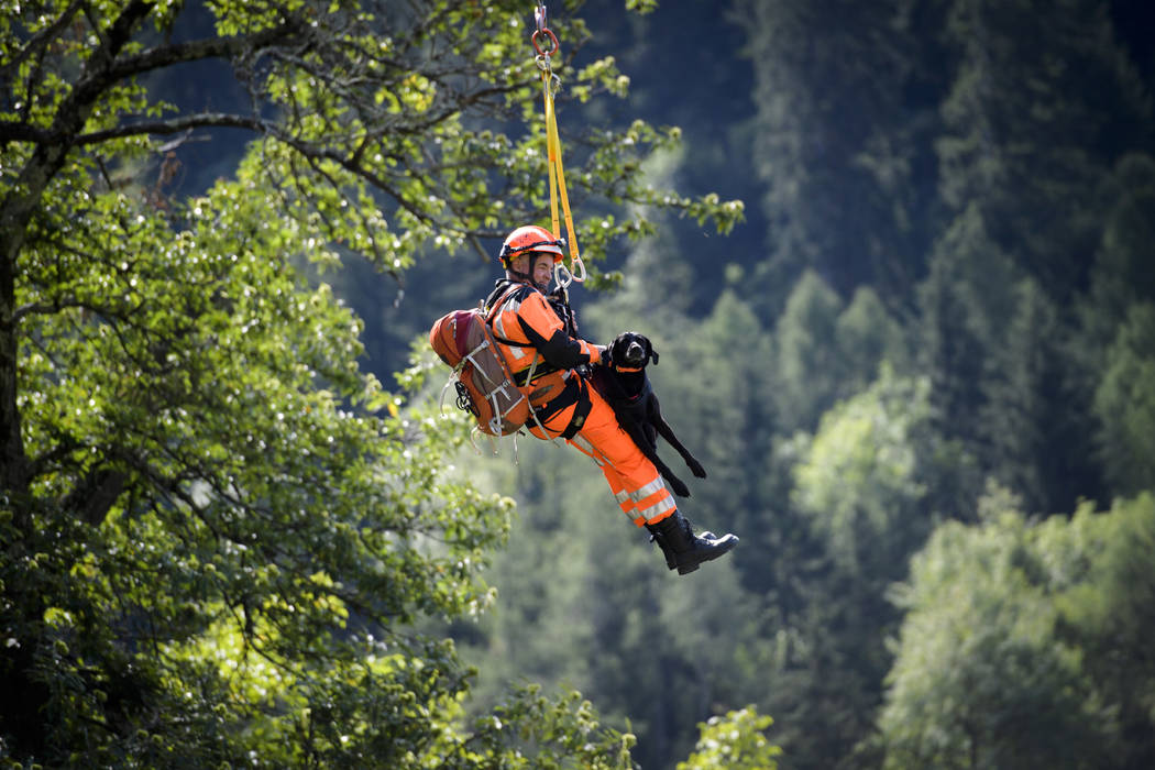 A rescue worker and a dog are transported by a helicopter in the village Bondo in Graubuenden in southern Switzerland, Thursday, Aug.t 24, 2017. Police said eight people are still unaccounted for  ...