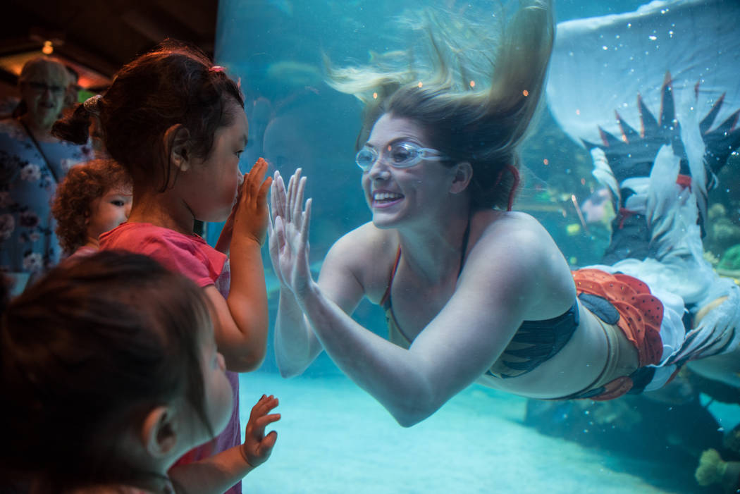Nicole Grant expresses friendly greetings to Hazel Kim, 3, at her mermaid show at Silverton hotel-casino on Thursday, Aug. 24, 2017, in Las Vegas. Morgan Lieberman Las Vegas Review-Journal