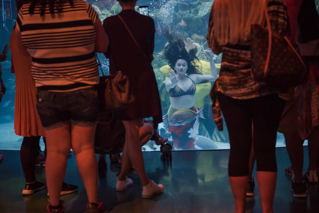 Logan Halverson waves to spectators at her mermaid show at the Silverton on Thursday, Aug. 24, 2017, in Las Vegas. Morgan Lieberman Las Vegas Review-Journal