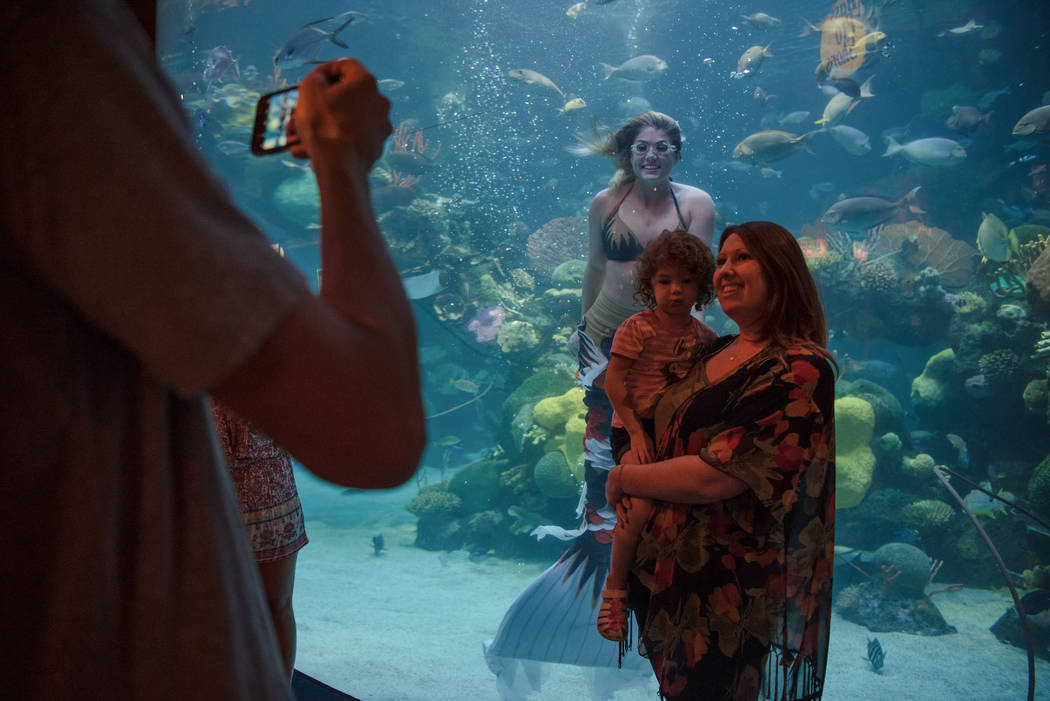 Nicole Grant takes a family picture with Las Vegas residents Ashley Ditzel and her daughter Emily, 3, at a mermaid show at the Silverton on Thursday, Aug. 24, 2017, in Las Vegas. Morgan Lieberman  ...
