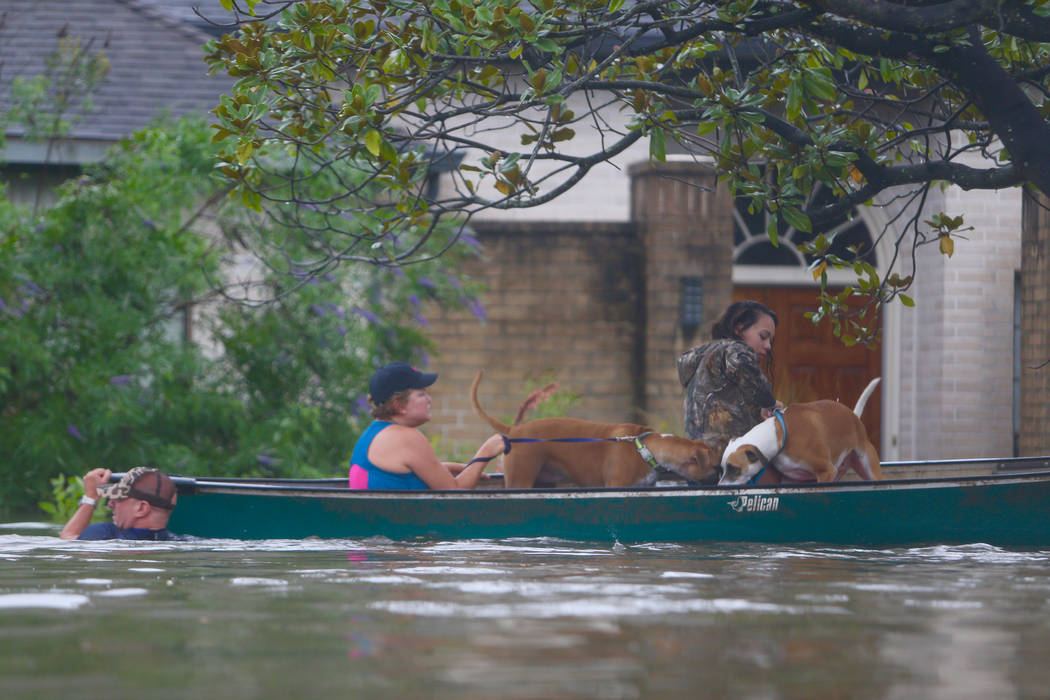 A family evacuates their Meyerland home in Houston, Sunday, Aug. 27, 2017.  Rescuers answered hundreds of calls for help Sunday as floodwaters from the remnants of Hurricane Harvey rose high enoug ...