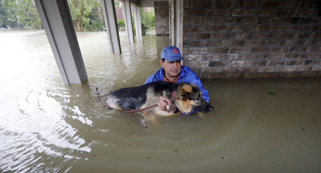 Joe Garcia carries his dog Heidi from his flooded home as he is rescued from rising floodwaters from Tropical Storm Harvey on Monday, Aug. 28, 2017, in Spring, Texas. (AP Photo/David J. Phillip)