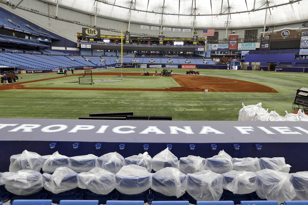 Worker replace the infield dirt at Tropicana Field Tuesday, Feb. 9, 2016, in St. Petersburg, Fla., before the start of the 2016 Tampa Bay Rays season.  Rays pitchers and catcher report for spring  ...