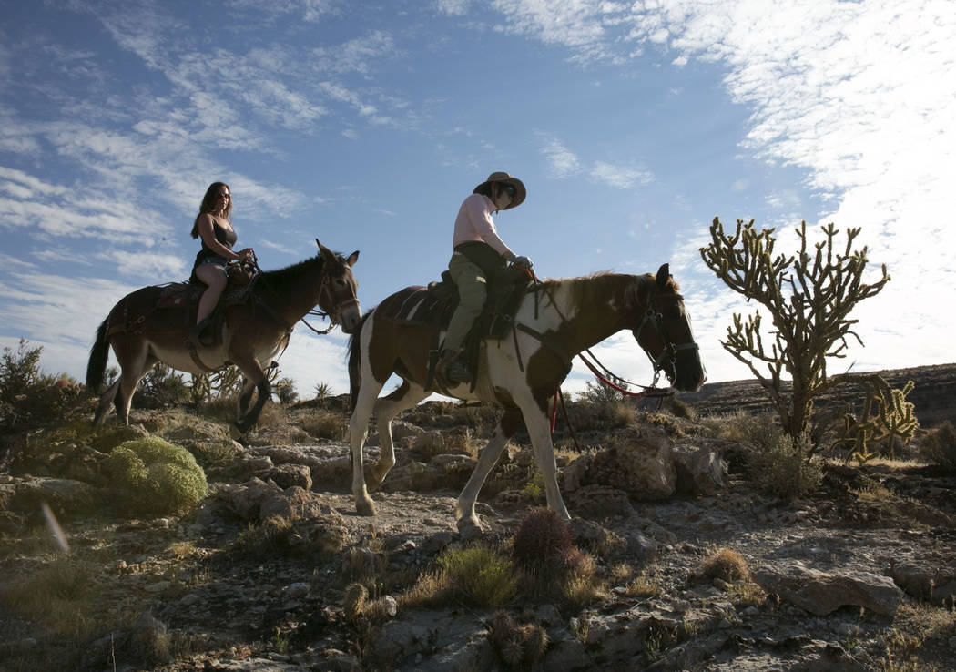 Louise Harris, left, of England and Daisy Chan of Hong Kong during their horseback riding tour of Red Rock Canyon on Monday, Aug. 28, 2017, in Las Vegas. Bizuayehu Tesfaye Las Vegas Review-Journal ...