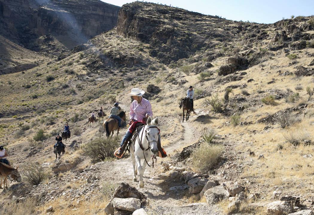 Mary Rose Santoro, front, leads a two-hour horseback riding tour of Red Rock Canyon on Monday, Aug. 28, 2017, in Las Vegas. Bizuayehu Tesfaye Las Vegas Review-Journal @bizutesfaye