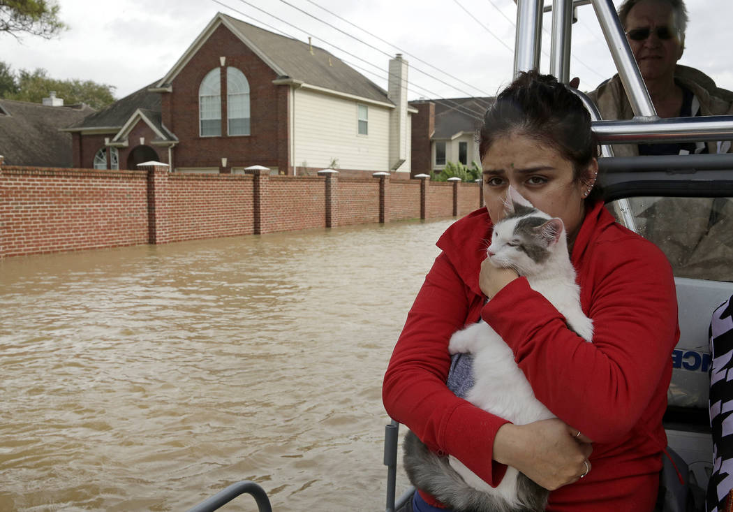 Jannett Martinez holds her cat Gigi as she rides a boat out of her neighborhood, which was inundated after water was released from nearby Addicks Reservoir when it reached capacity due to Harvey o ...
