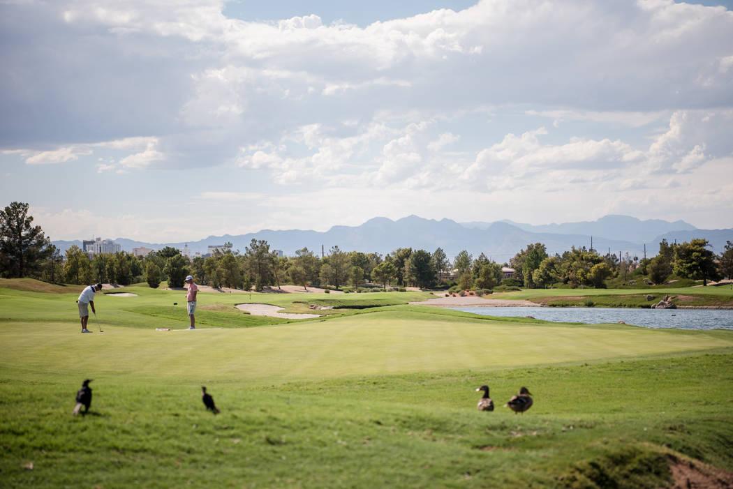 Desert Pines Golf Course on Wednesday, Aug. 30, 2017, in Las Vegas. Morgan Lieberman Las Vegas Review-Journal