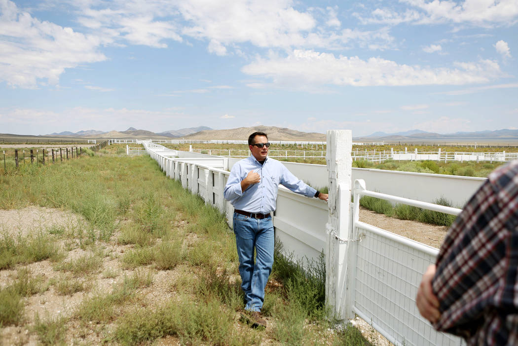 Director of the resources and facilities for the Southern Nevada Water Authority Zane Marshall shows the new sheep coral Great Basin Ranch in Dry Lake Valley, Monday, Aug. 7, 2017. Elizabeth Bruml ...