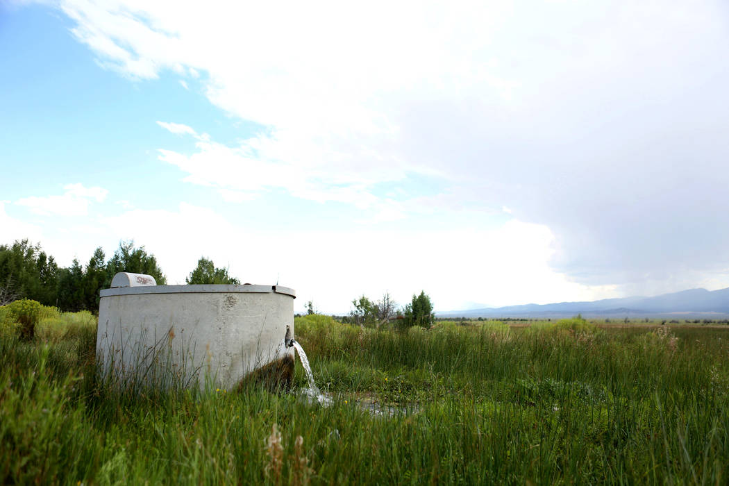 One of the wells that feeds Shoshone Ponds flows on the Great Basin Ranch in Spring Valley, Monday, Aug. 7, 2017. Elizabeth Brumley Las Vegas Review-Journal