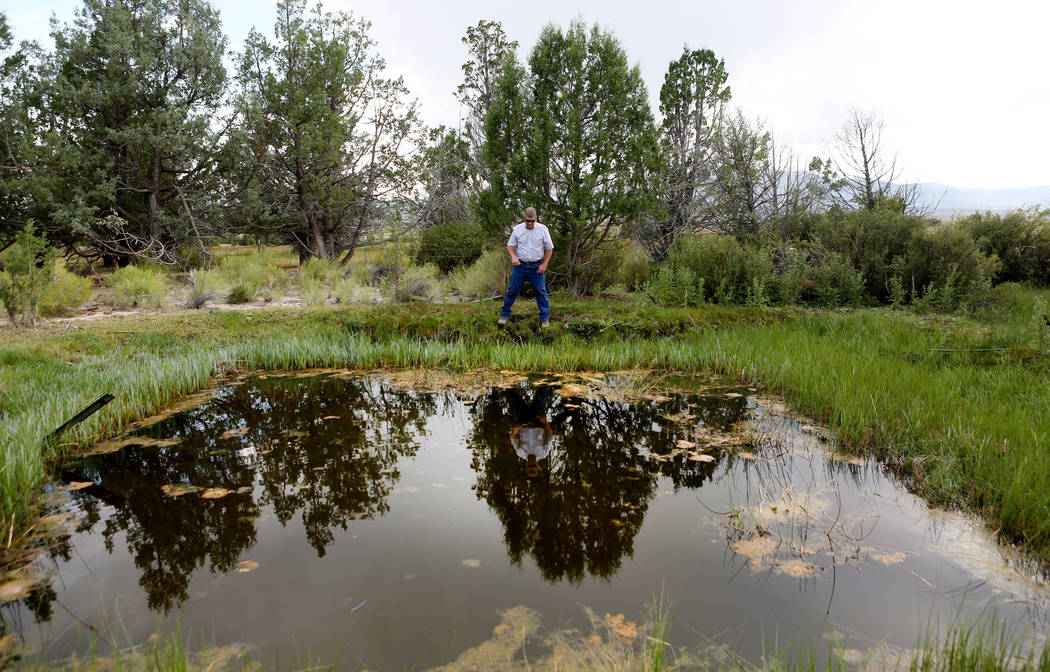 Ranch and resource manager Bernard Petersen explains the Shoshone Ponds that flows on the Great Basin Ranch in Spring Valley, Monday, Aug. 7, 2017. Elizabeth Brumley Las Vegas Review-Journal