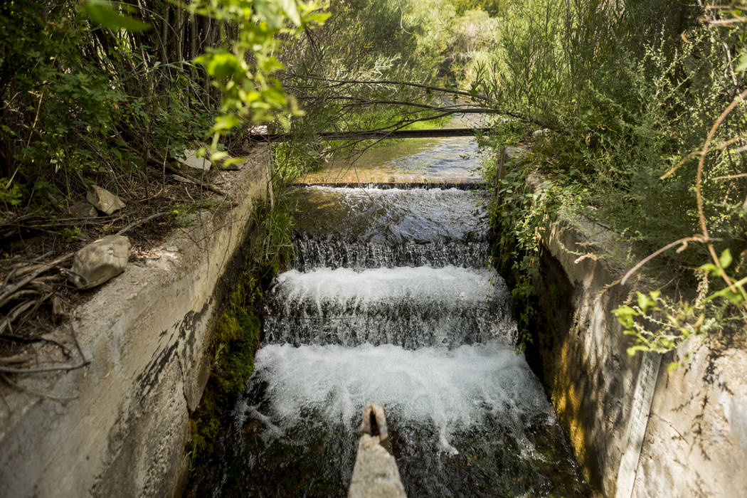 Kalamazoo Creek where water is divided between the Great Basin Ranch and a neighboring ranching operation in Spring Valley, Tuesday, Aug. 8, 2017. Elizabeth Brumley Las Vegas Review-Journal
