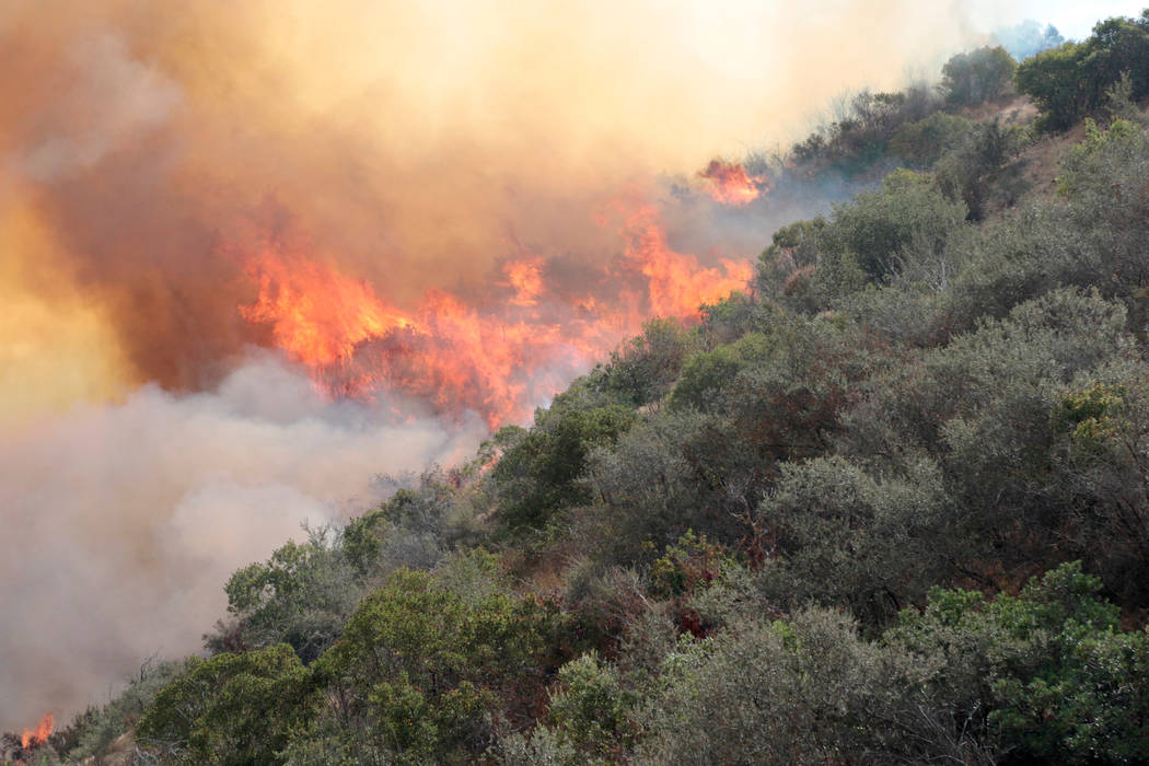 The La Tuna Canyon fire has burned 5,895 acres and is still at 10% contained in Burbank, California, Sept. 3, 2017. (Kyle Grillot/Reuters)
