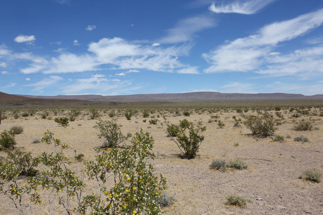 Yucca Mountain, the proposed site for a nuclear waste repository, is seen from Crater Flat where dormant cinder cone volcanos dot the desert floor, on Monday, May 22, 2017. (Michael Quine/Las Vega ...