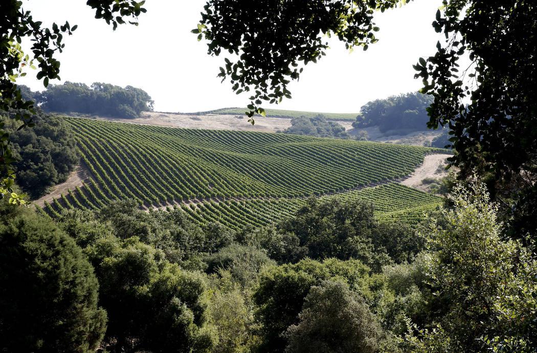 Chalk Hill Estate Vineyards, owned by the Vegas Golden Knights owner Bill Foley, in Healdsburg, Calif., on Wednesday, Aug. 2, 2017. Bizuayehu Tesfaye Las Vegas Review-Journal @bizutesfaye