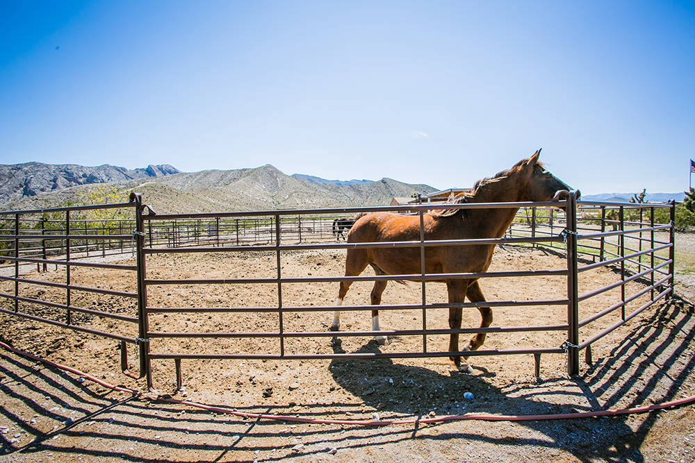 The property includes a round pen for exercising horses. (Windermere Prestige Properties)