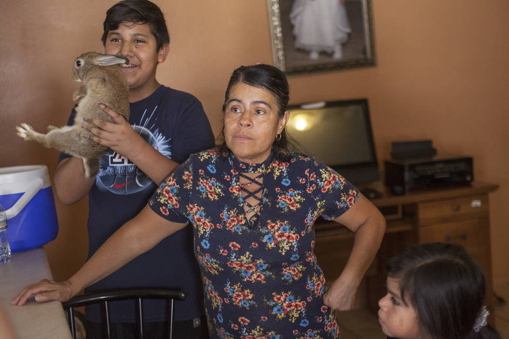 Jacob Meneses, 13, holds Brownie II, from left, next to his mother Ivon Meneses and his sister Ruby Estrada, 4, in their home in Las Vegas, Thursday, Aug. 10, 2017. Ivon fears a change in current  ...