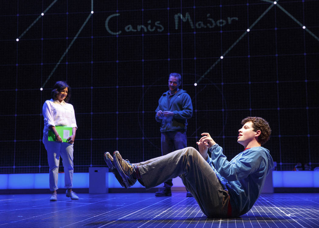 Curious Incident of the Dog in the Night-Time/Joan Marcus  Adam Langdon