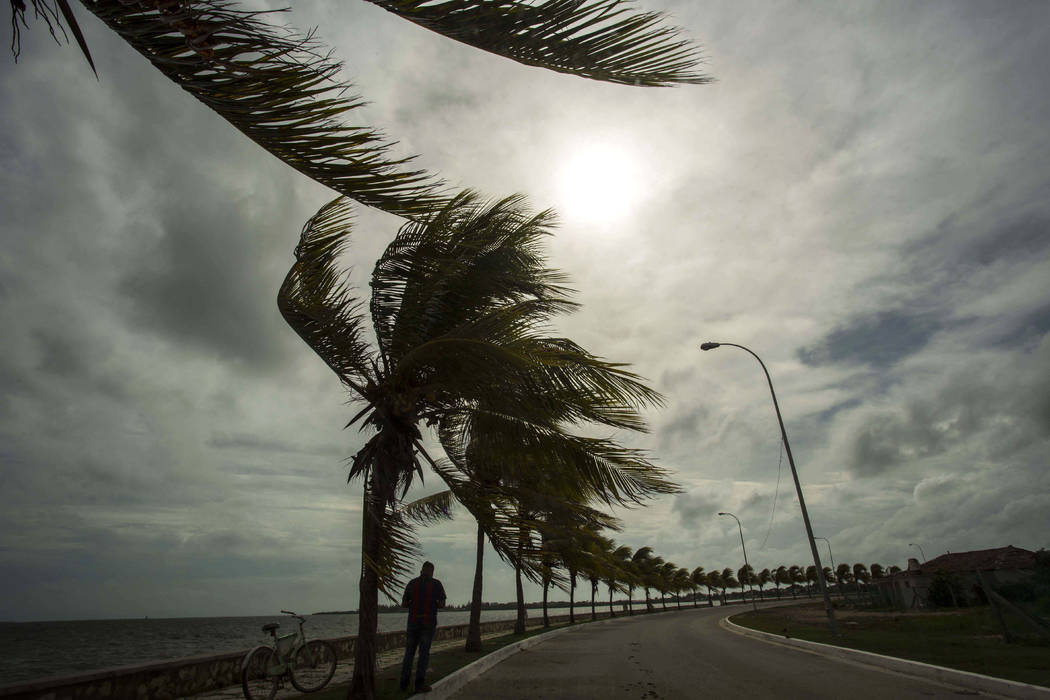 Winds brought by Hurricane Irma blow palm trees lining the seawall in Caibarien, Cuba, Friday, Sept. 8, 2017. Cuba evacuated tourists from beachside resorts after Hurricane Irma left thousands hom ...