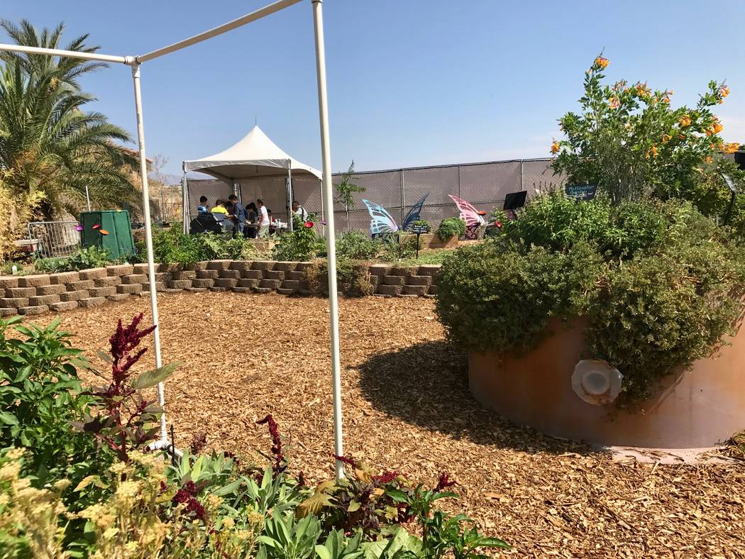 The Springs Preserve opened its new teaching garden to the public on Sept. 7. Forty Griffith Elementary students attended and participated in learning activities. They also received a tour of the  ...