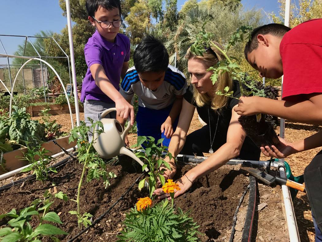 Springs Preserve Foundation board member Jenna Morton shows Griffith Elementary School fourth grade students how to transplant and water vegetables in the new teaching garden at Springs Preserve o ...
