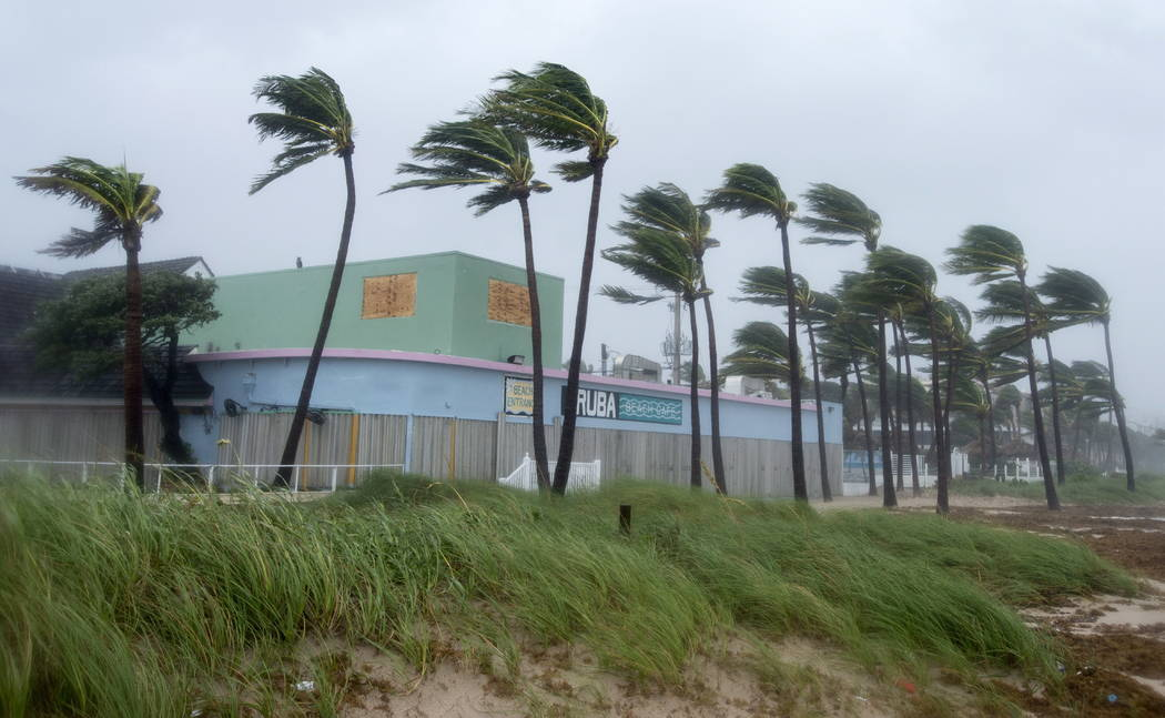Palm trees bend in the heavy winds along the ocean coast as Hurricane Irma blows in Sunday, Sept. 10, 2017, in Fort Lauderdale, Fla. (Paul Chiasson/The Canadian Press via AP)