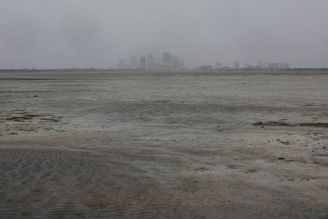 The Tampa skyline is pictured across Hillsborough Bay after water receded from the harbour ahead of the arrival of Hurricane Irma in Tampa, Florida, U.S., September 10, 2017. (Chris Wattie/reuters)