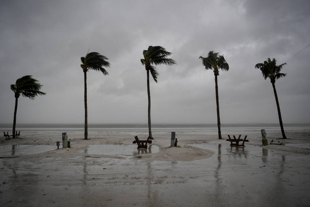 Palm trees sway as the wind blows and water rises at an evacuated recreational vehicle park as hurricane Irma approaches Fort Myers Beach, Florida, U.S., September 10, 2017. (Chris Wattie/reuters)