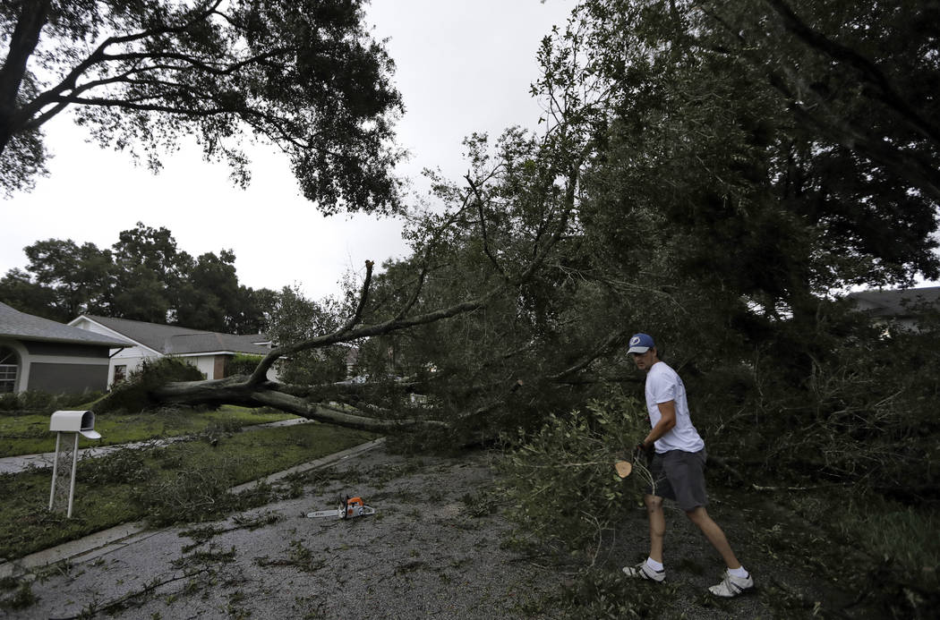 Brian Baker, of Valrico, Fla., cuts up an Oak tree that fell across Falling Leaves Drive after Hurricane Irma passed through the area, Monday, Sept. 11, 2017, in Valrico, Fla. (AP Photo/Chris O'Meara)