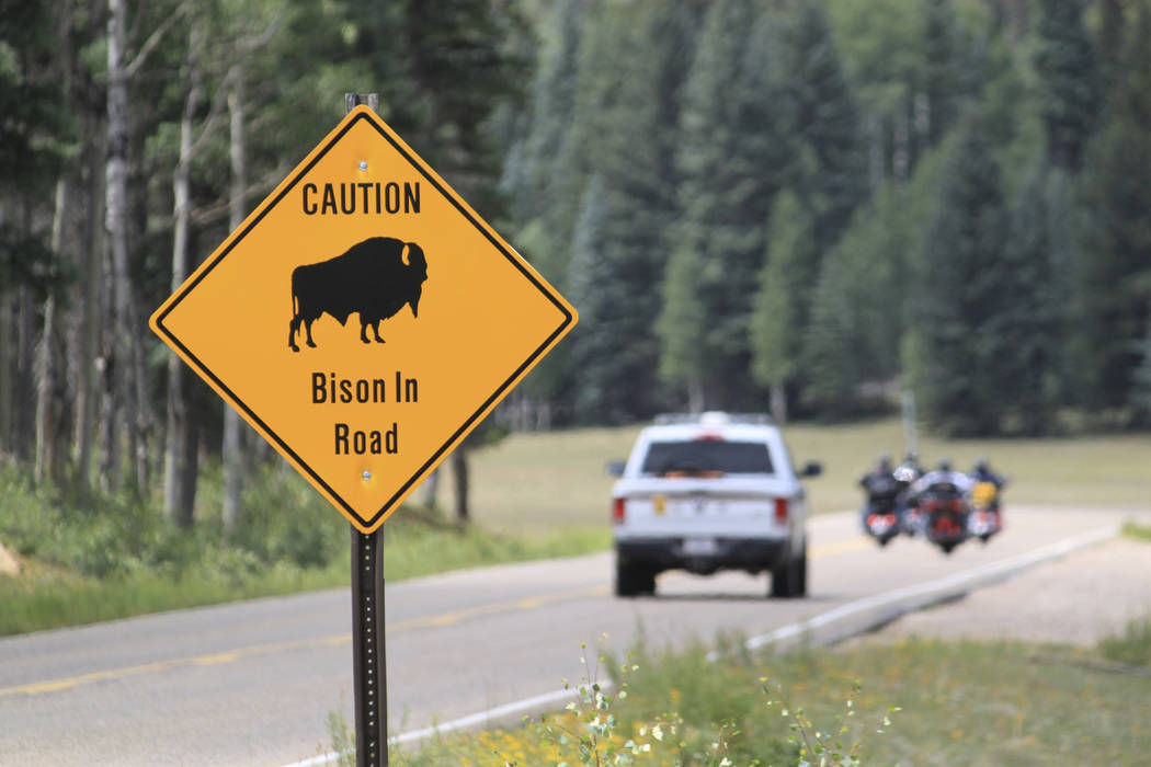 A park ranger and a group of motorcyclists pass a sign warning of bison within the Grand Canyon National Park in northern Arizona, July 31, 2016. (Susan Montoya Bryan/File, AP)