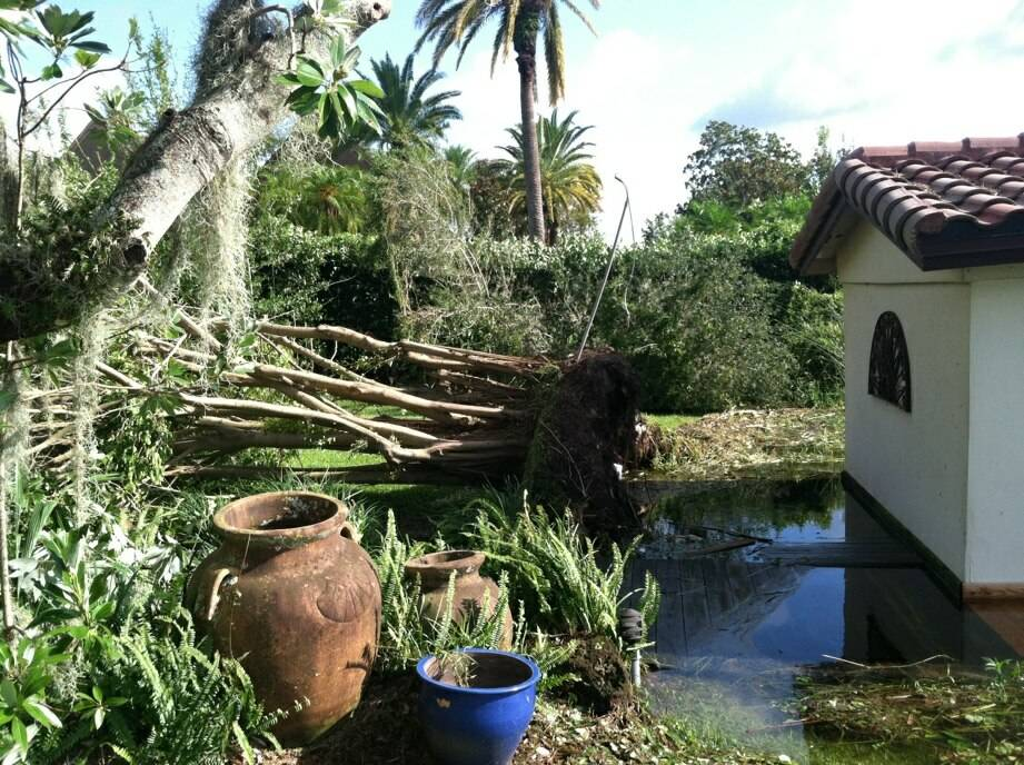 The Orlando, Fla. home of Carrot Top (real name Scott Thompson) is shown in the aftermath of Hurricane Irma on Monday, Sept. 11, 2017. (Scott Thompson)