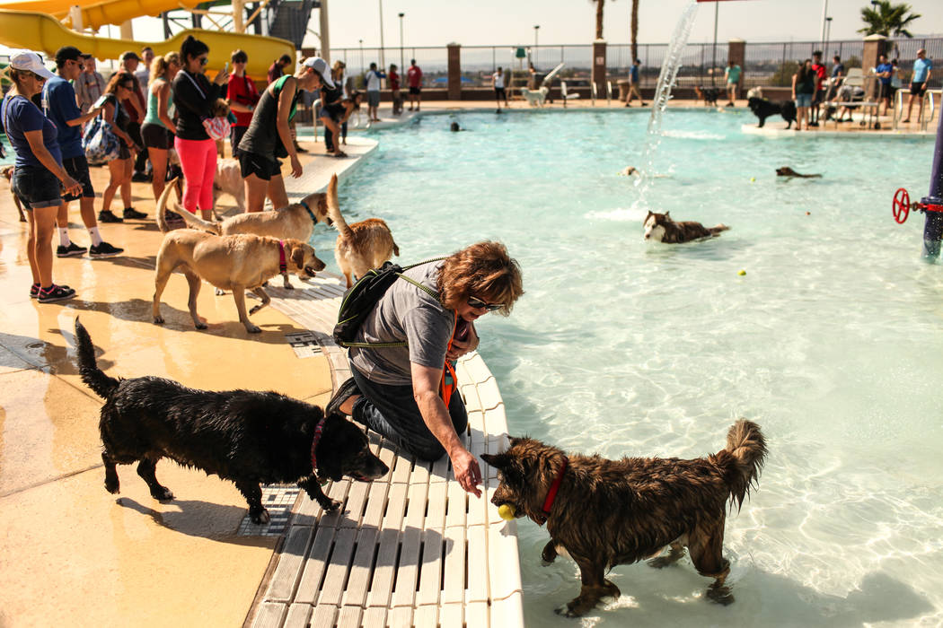 Melissa Brearey and her dog Ziva, right, attend the Dog Daze of Summer event at the Desert Breeze Aquatics Facility in Las Vegas, Saturday, Sept. 16, 2017. Joel Angel Juarez Las Vegas Review-Journ ...
