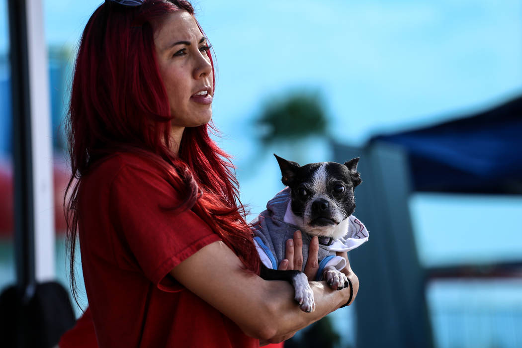 Jade Chevavudhi holds her dog Violet during the Dog Daze of Summer event at the Desert Breeze Aquatics Facility in Las Vegas, Saturday, Sept. 16, 2017. Joel Angel Juarez Las Vegas Review-Journal @ ...