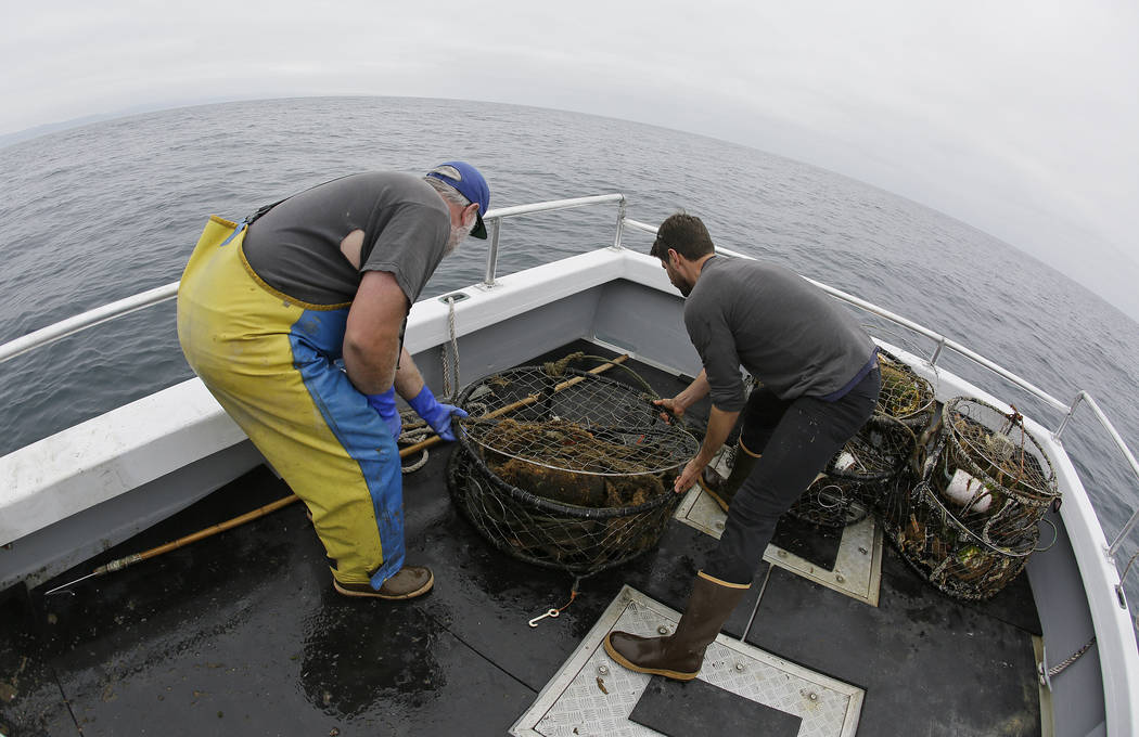 Jake Bunch, left, and Tom Dempsey, right, of the Nature Conservancy gather abandoned crab pots they hauled up off Half Moon Bay, Calif., last month. (AP Photo/Eric Risberg)