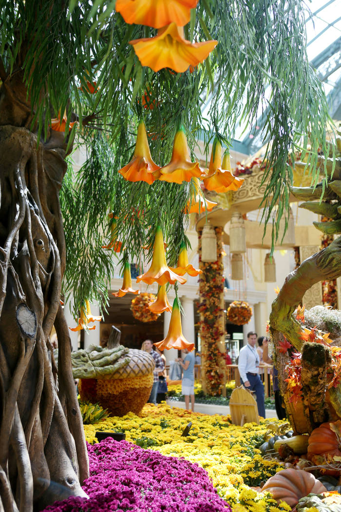 Individuals looks at the fall display inspired by a recent trip to India by renowned designer Ed Libby, at the Bellagio Conservatory & Botanical Gardens in Las Vegas, Tuesday, Sept. 19, 207. ( ...