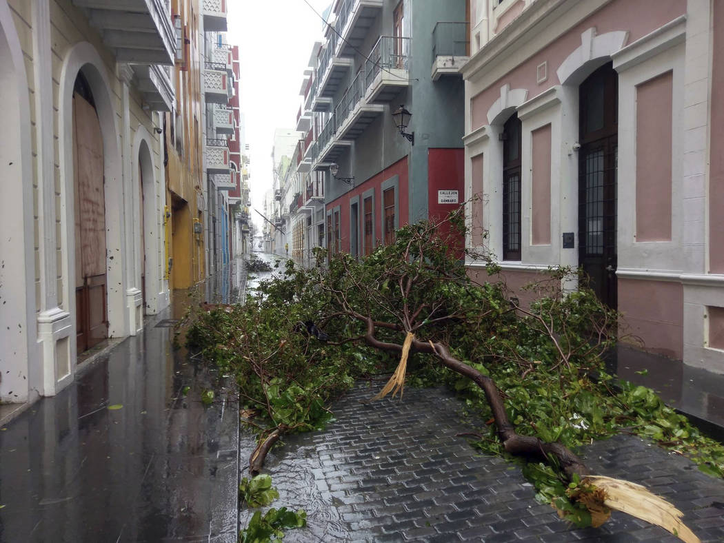 A downed tree blocks a street during Hurricane Maria in Old San Juan, Puerto Rico, Wednesday, Sept. 20, 2017. The strongest hurricane to hit Puerto Rico in over 80 years tore off roofs and doors,  ...