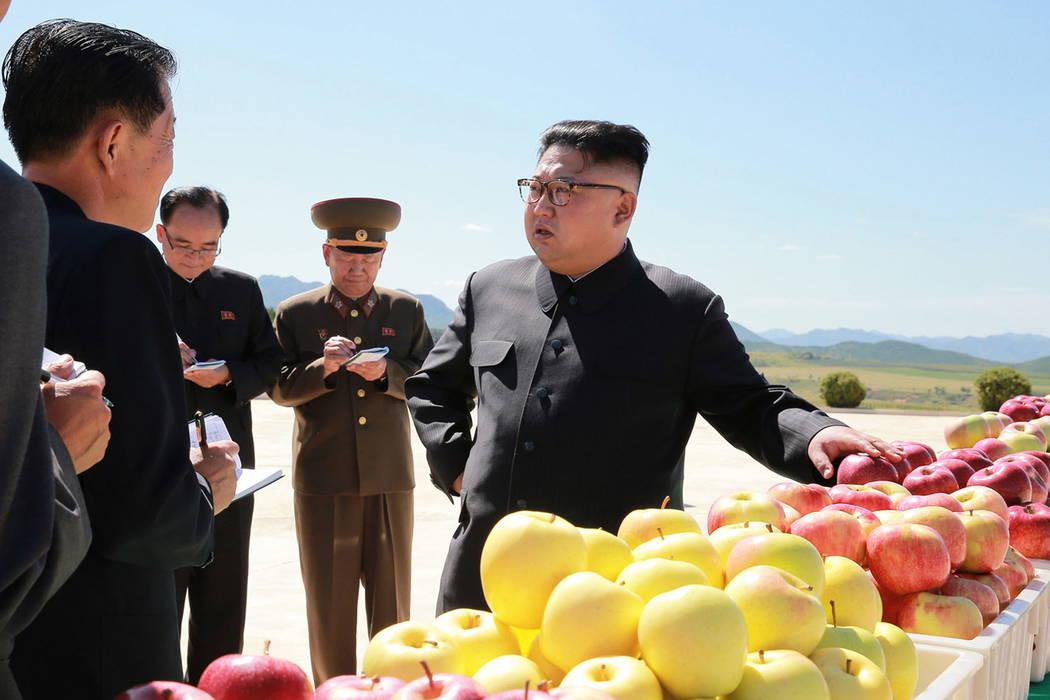 North Korean leader Kim Jong Un, right, visits a fruit farm in Kwail County, South Hwanghae Province, North Korea. (Korean Central News Agency/Korea News Service via AP)