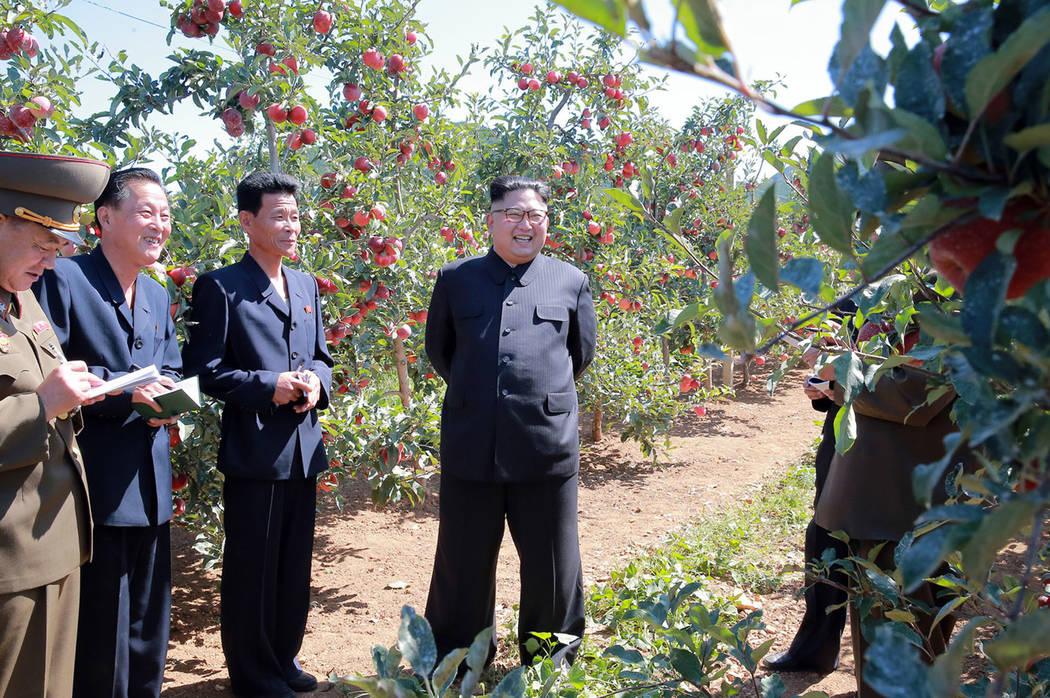 North Korean leader Kim Jong Un, center, visits a fruit farm in Kwail County, South Hwanghae Province, North Korea. (Korean Central News Agency/Korea News Service via AP)