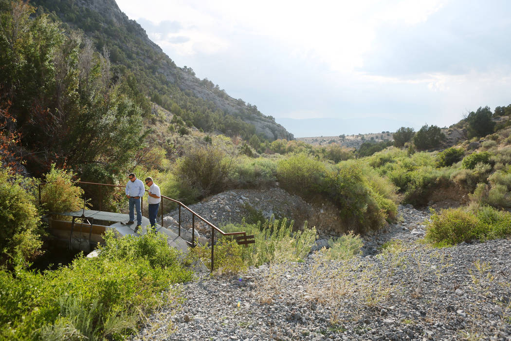 Ranch and resource manager Bernard Petersen, left, and Zane Marshall , director of resources for the Southern Nevada Water Authority, look at Swallow Spring at Great Basin Ranch in Spring Valley i ...