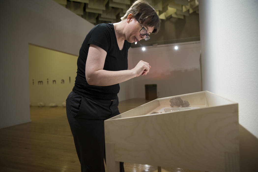 DK Sole, UNLV research and educational engagement specialist, shows artwork by Candice Lin for the upcoming Preservation exhibition at UNLV's Marjorie Barrick Museum of Art in Las Vegas, Friday, S ...