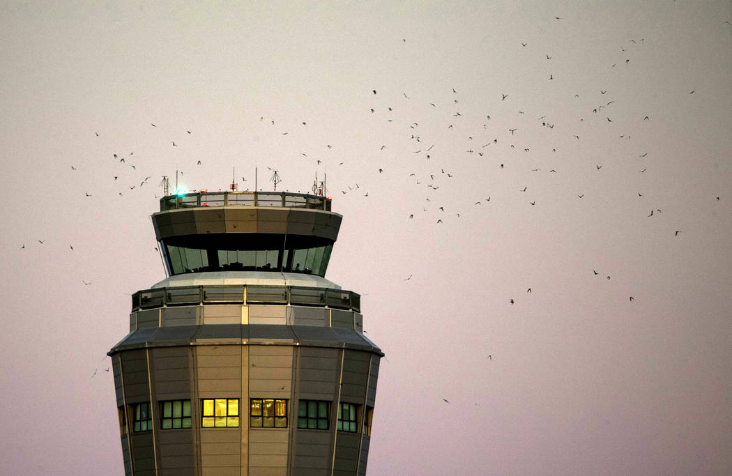 Hundreds of bats fly near an air traffic tower at McCarran International Airport in Las Vegas, Monday, Sept. 25, 2017. Richard Brian Las Vegas Review-Journal @vegasphotograph