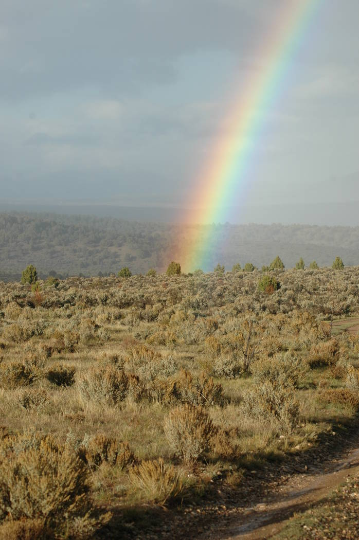 It's is the little things that make the outdoor experience what it is. This rainbow made the day for my friends and I during a central Nevada deer hunt. (Doug Nielsen)