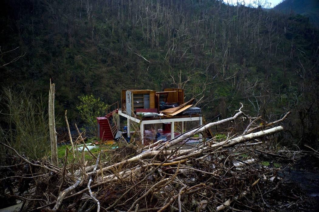 Donald Trump's rudeness in Puerto Rico